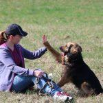 Jak zachránit psí sebevědomí aneb když se pes bojí