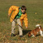 Jak udržet pozornost psa
