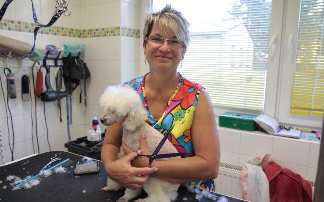 Romana Hanousková, zgaráže po nejkrásnější salon a psí školu