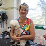 Romana Hanousková, z garáže po nejkrásnější salon a psí školu